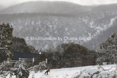 Falls Creek 014 Pic Charlie Brown