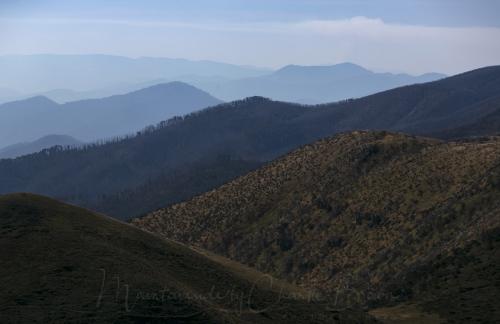 Hotham Mountains